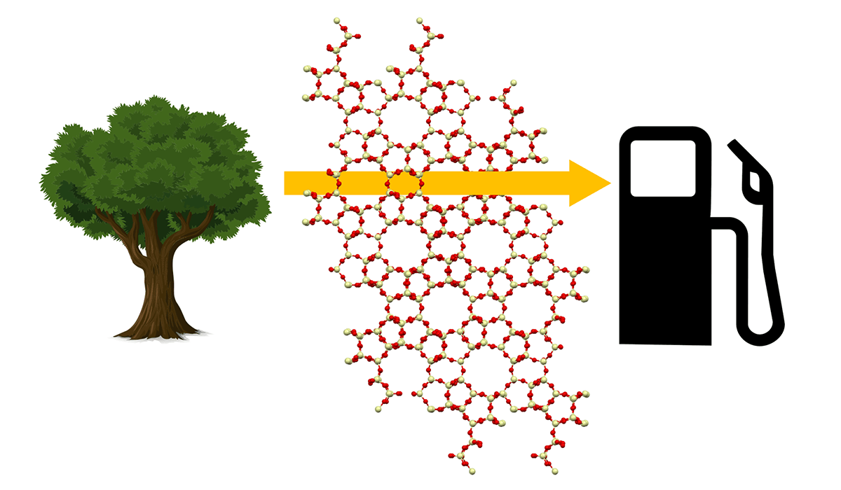 Image of a cellular structure with a tree on the left and a gas pump on the right. From the tree, a yellow arrow points at the gas pump.
