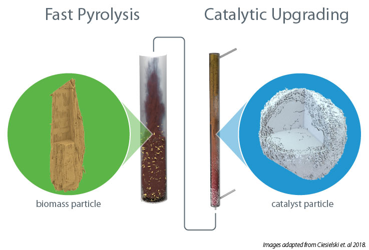 Figure shows how the biomass and catalyst particles are affected in fast pyrolysis and catalytic upgrading.